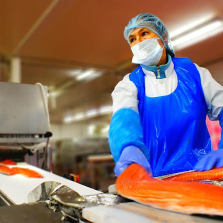 decoupe-saumon-3