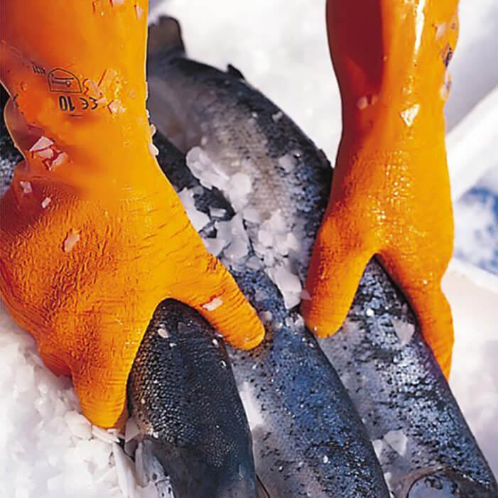 Gant-poisson